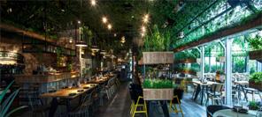 空间设计|以色列的segev kitchen garden餐厅