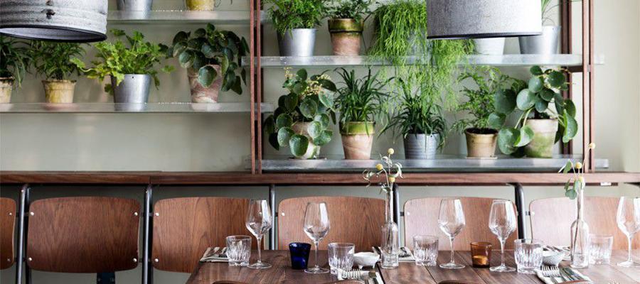 空间设计 丹麦花园餐厅